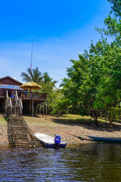 The View of the Amazon Boto lodge